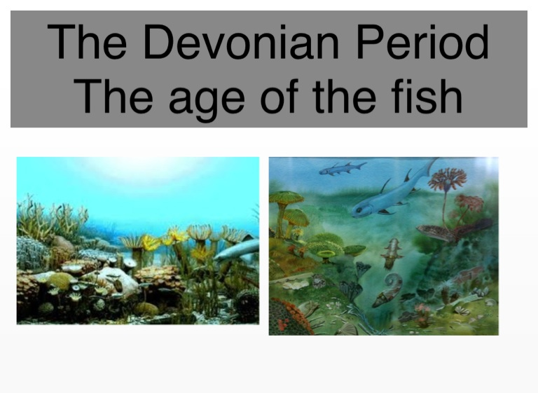 devonian period essay Free papers research paper sharks essay research paper sharkssharks are one sharks essay research paper sharkssharks are are from the devonian period.