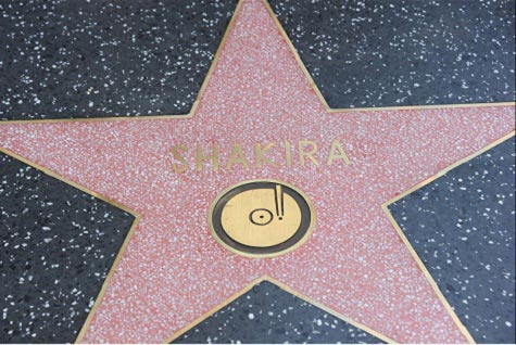 hollywood stars pic  software