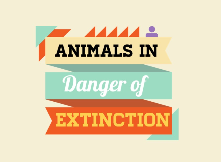 the dangers of extinction But life is filled with danger for a sea turtle, especially the hatchlings on the beach, birds, crabs, raccoons, even foxes will eat hatchlings and if hatchlings make it to the ocean, they are still tasty snacks for seabirds and fish.